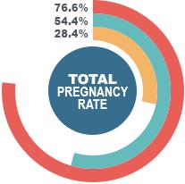 Total Pregnancy Rate