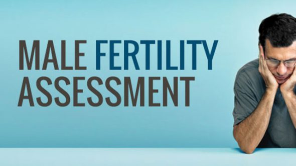 Male Fertility Assessment